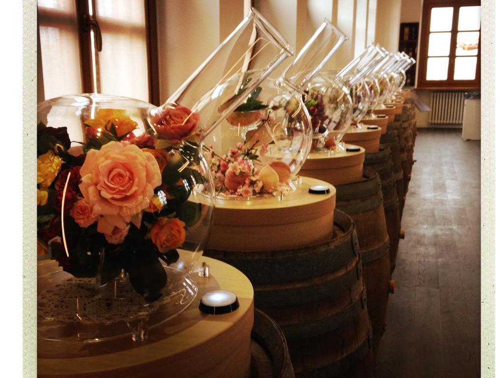 AGRILAB - Wine Tasting Experience