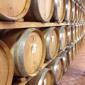 Cadia wine cellar